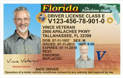 10 Save Attention Edt Blog Home 321-543-2809 amp; … Veterans At Florida Deport Sofi Lowes –